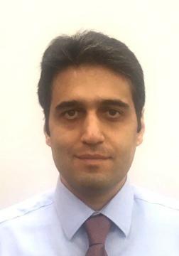 Mohammad Tabaeizadeh Fesharaki